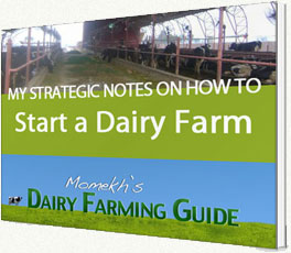 smeda business plan for dairy farm